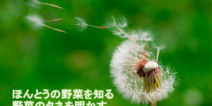 seed_photo
